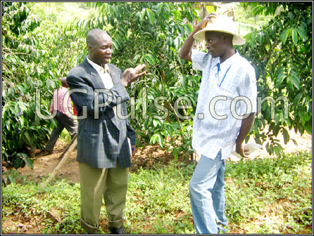 Lubega (L) talks to a farmer visiting his garden