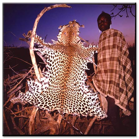 The Leopard Poacher