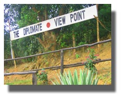 The Diplomate View Point